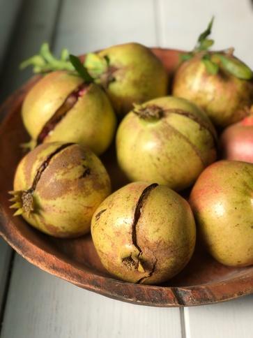 Melograno antiossidante