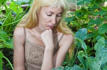 5 piante da coltivare per proteggere l'orto da insetti