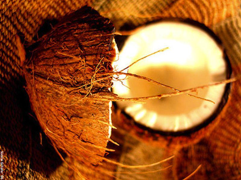 Olio di cocco: il doposole vegetale
