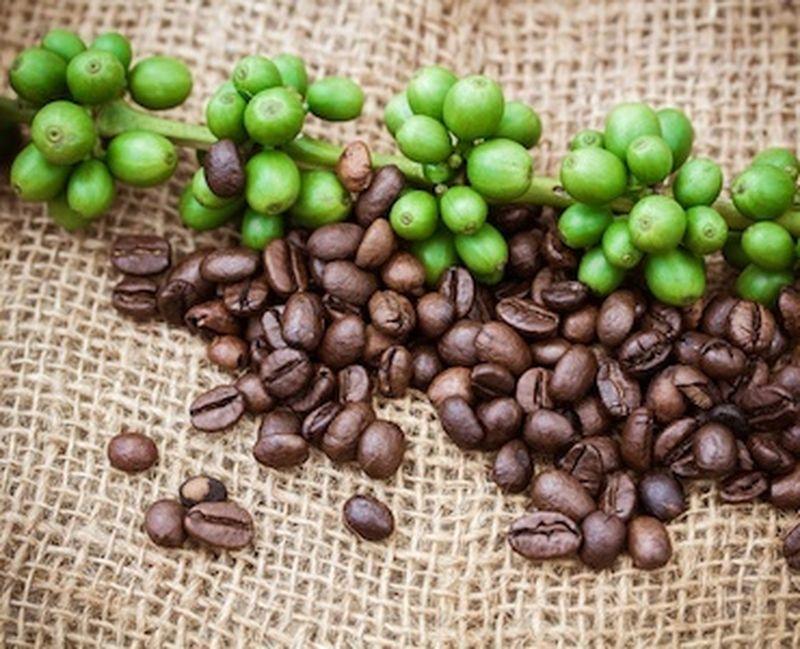 Decaffeinato o no? Il caffè e gli effetti della caffeina