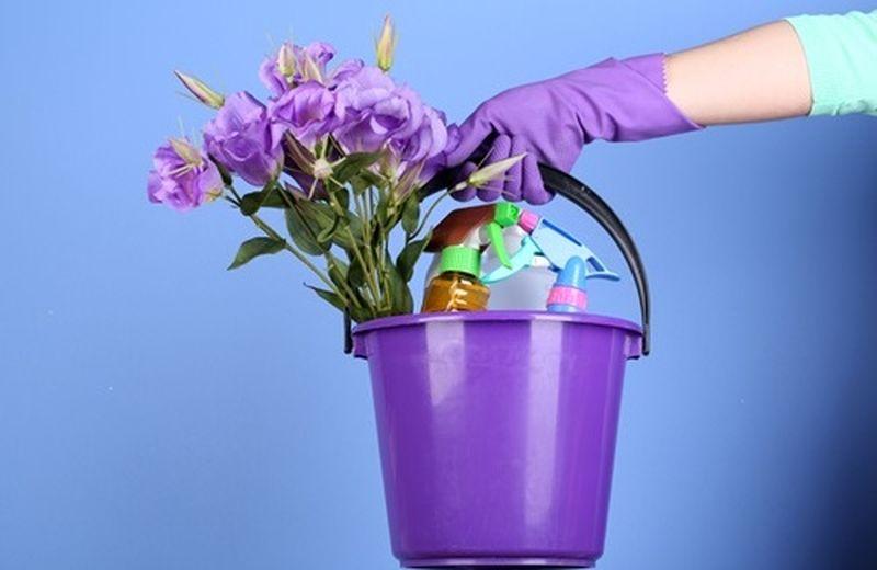 Pulizie di primavera eco(logiche) ed eco(nomiche)