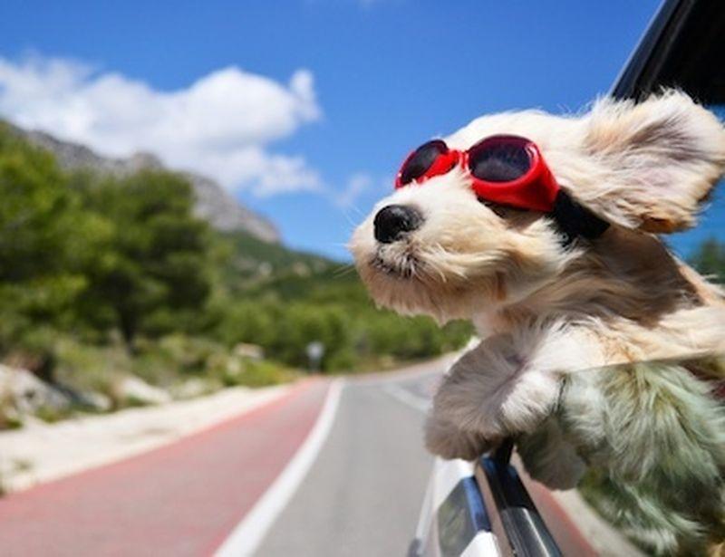 Mete a tutta natura per ricaricarsi in vacanza