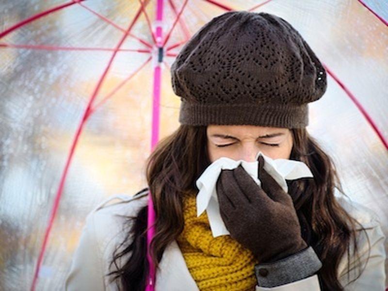 Raffreddore, 3 rimedi fitoterapici in aiuto