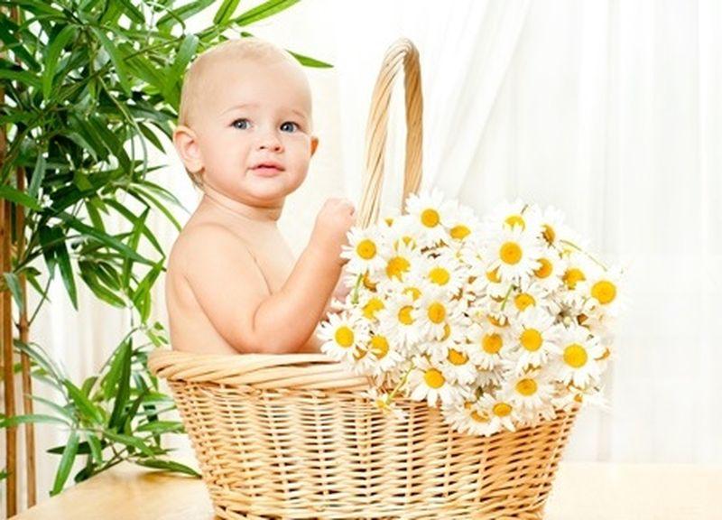 La camomilla per neonati e bambini
