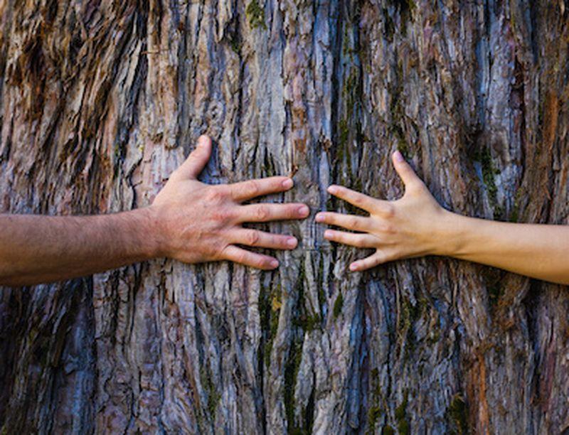 Consigli naturali per ravvivare la coppia con fantasia