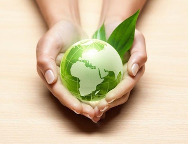 Vivere in maniera ecologica senza troppi sacrifici