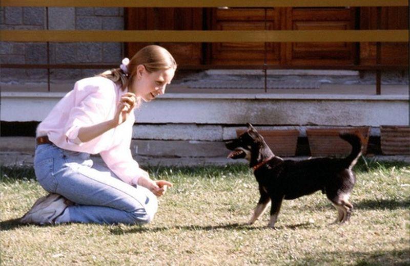 Consulente per il benessere nella relazione tra esseri umani ed animali