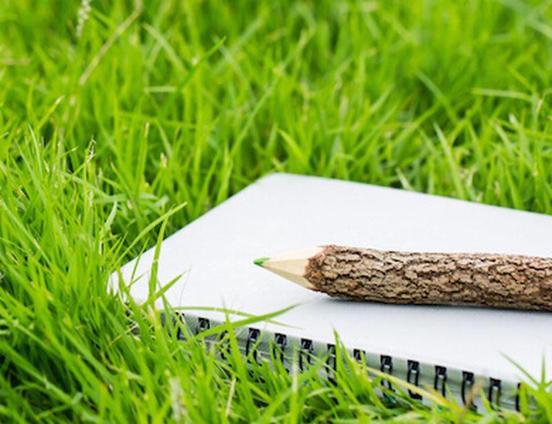 L'educazione ambientale arriva nelle scuole