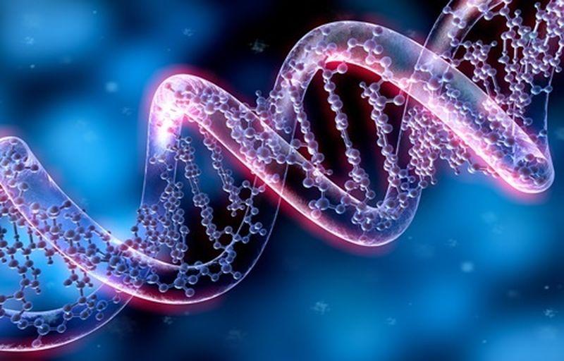 Dieta genetica, cos'è e come funziona
