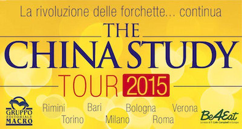 The China Study Tour 2015