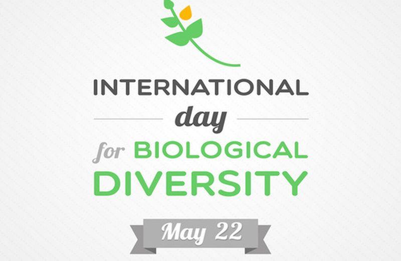Promuovere la biodiversità nel suo giorno
