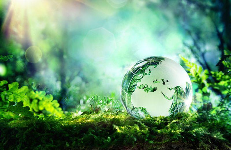 Sogna nella tua Giornata mondiale dell'ambiente