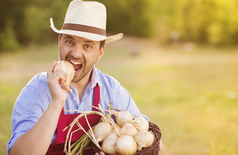 Mangiare è un atto agricolo, il manifesto verde