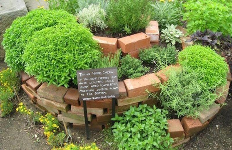 Fare la spirale di erbe aromatiche, utile e decorativa