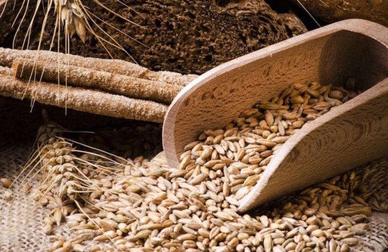 Emergenza fame: nei piccoli agricoltori la sicurezza alimentare