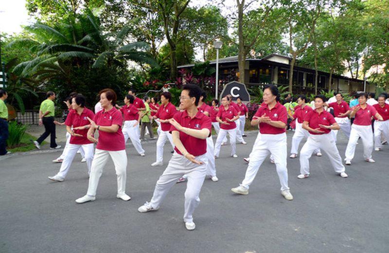 Espansione e conoscenza al Taiji Festival 2012