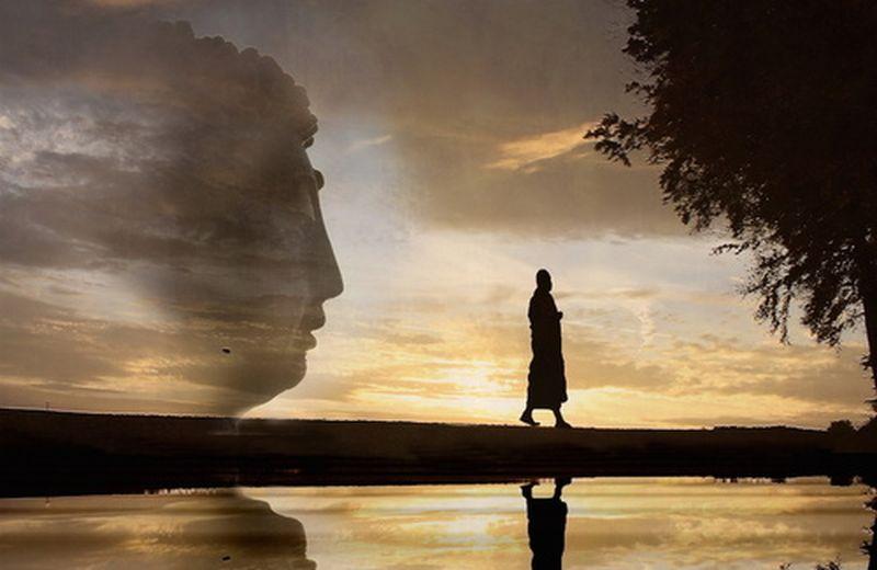Costruire la pace. Tra Thich Nhat Hanh, Ghandi, Aung San Kyi...e i cuccioli di umani
