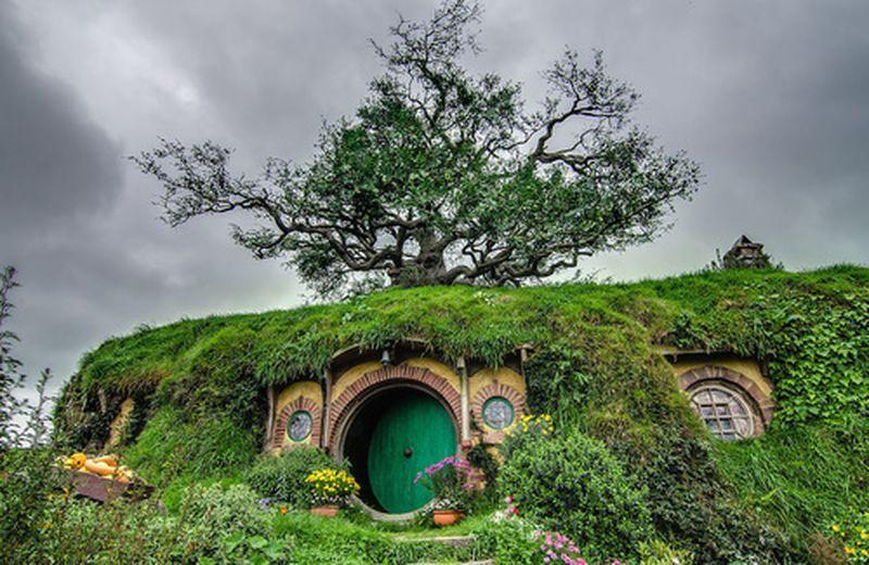 San Francesco e Tolkien: onore alla vita naturale