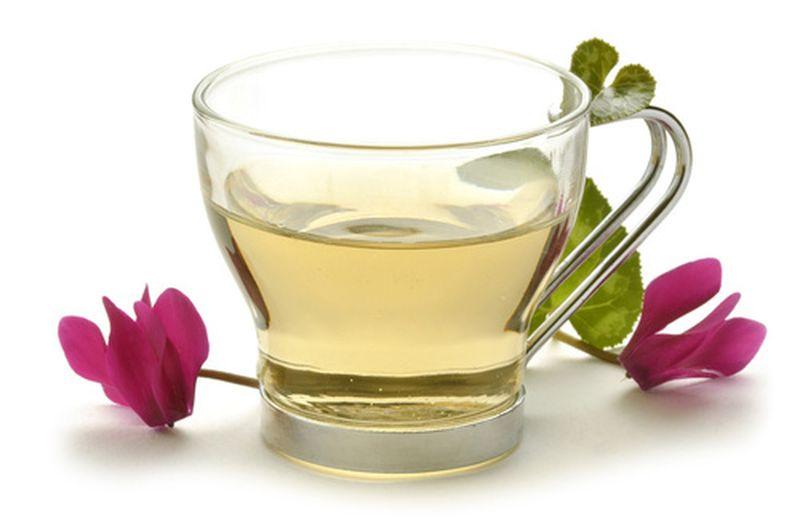 Decotti, infusi, tisane e tè, quali differenze?