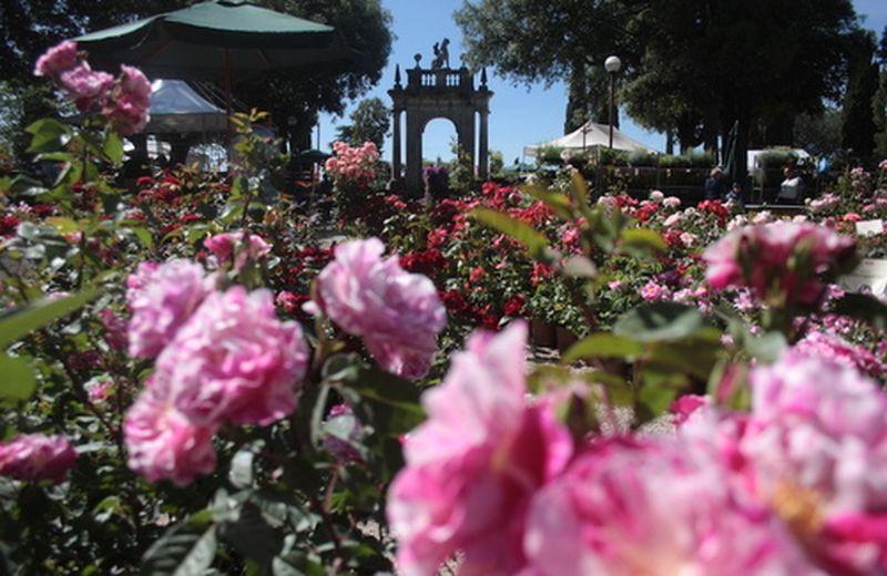 Perugia Flower Show 2012: curare il giardino apre il cuore
