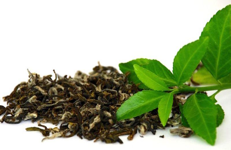 I tipi di tè verde