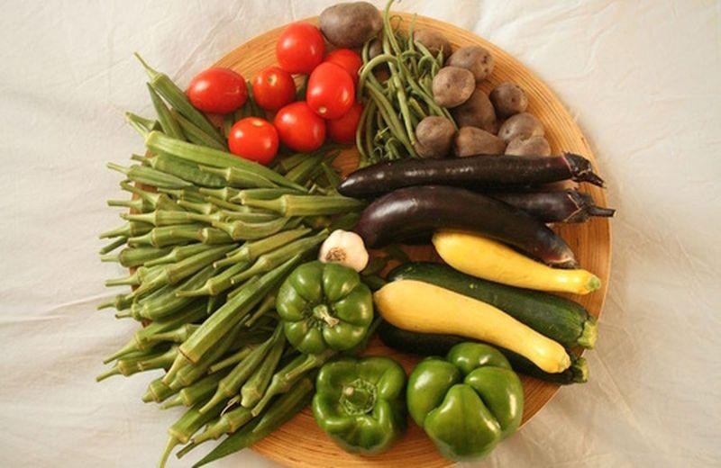 La dieta biodinamica