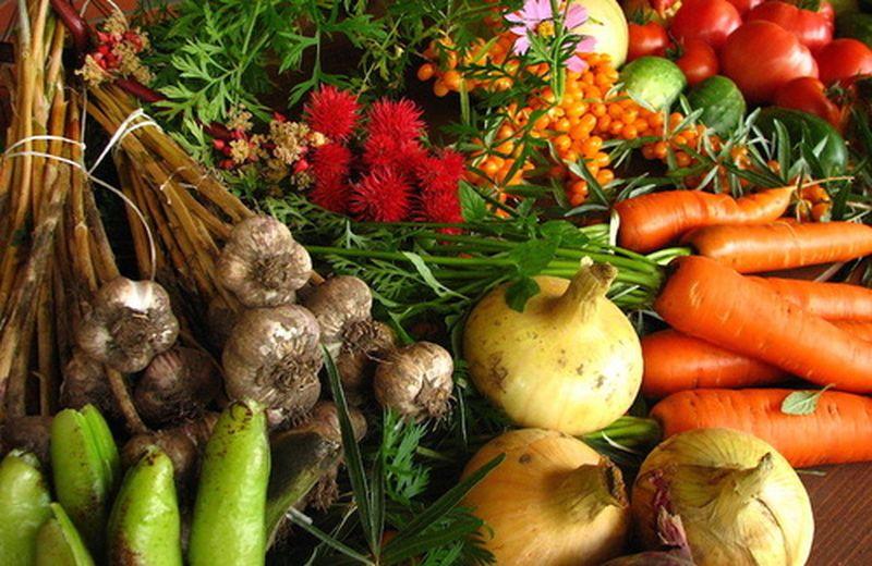 Gli alimenti per i vegetariani
