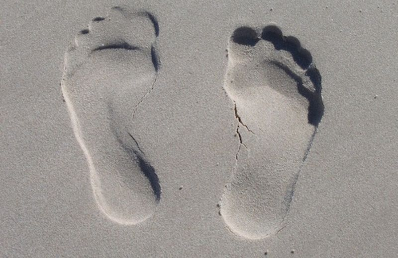 Le zone riflesse del piede: i reni
