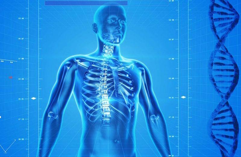 Le zone riflesse del piede: la colonna vertebrale
