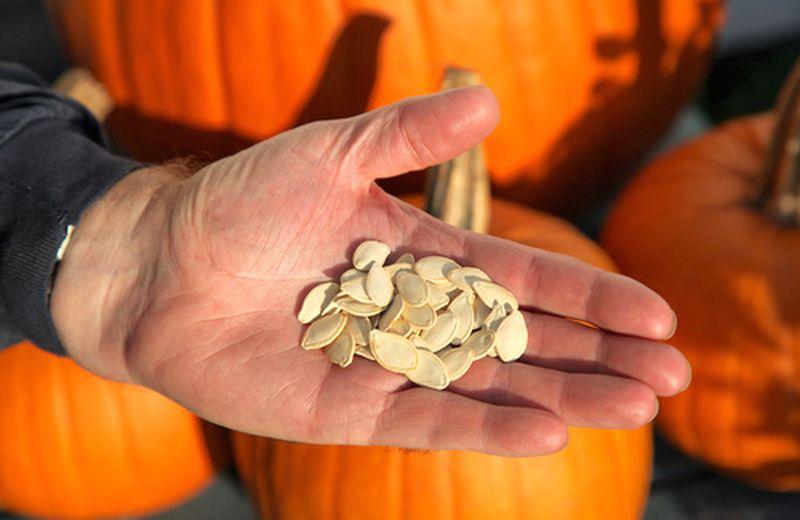 benessere della prostata semi di zucca menu