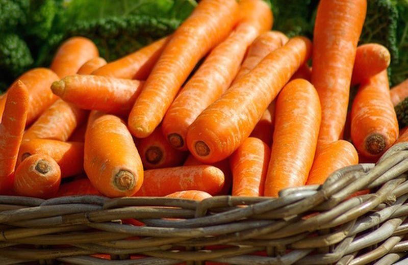 La carota, dall'orto alla nostra tavola