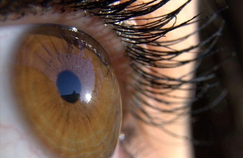I corsi di iridologia in Italia