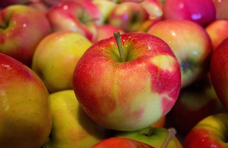 Aceto di mele brucia grassi