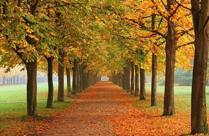 Preparare il corpo all'autunno