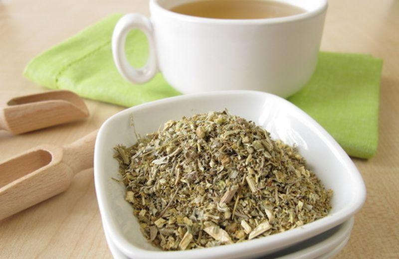 Assenzio, la pianta per i disturbi della digestione