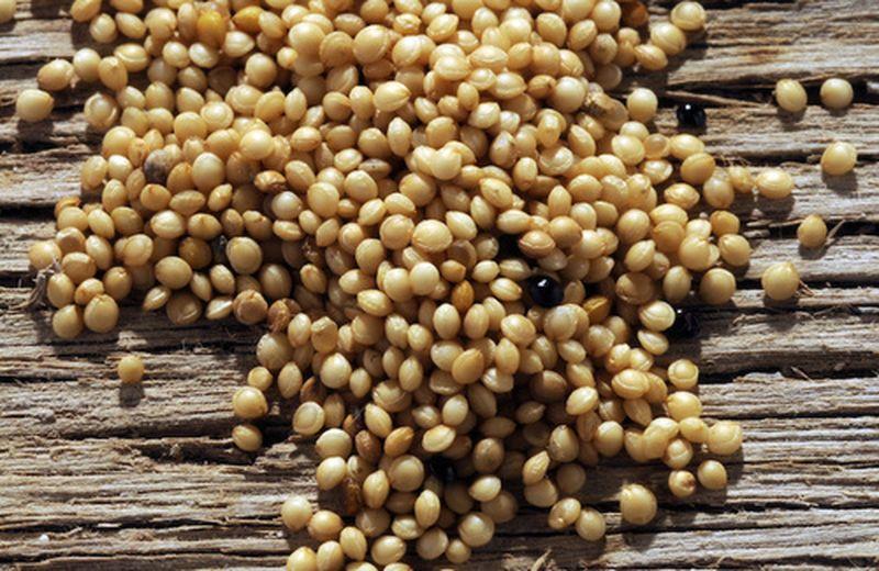Amaranto, 3 ricette naturali e sfiziose