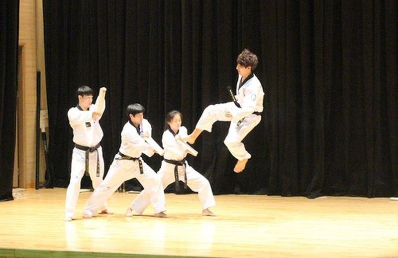 Le arti marziali coreane