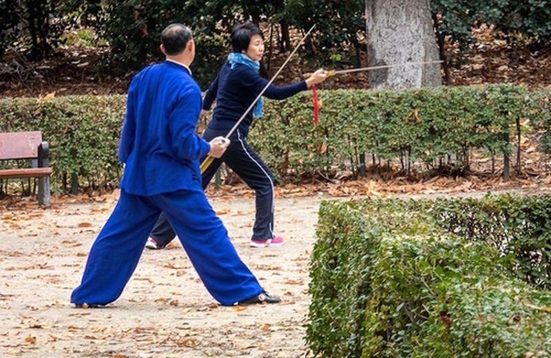 Le arti marziali giapponesi