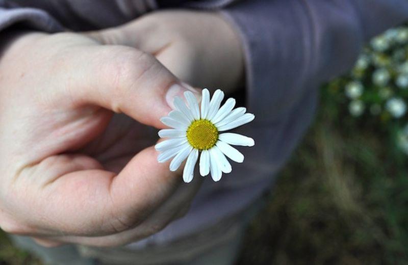I benefici della gratitudine