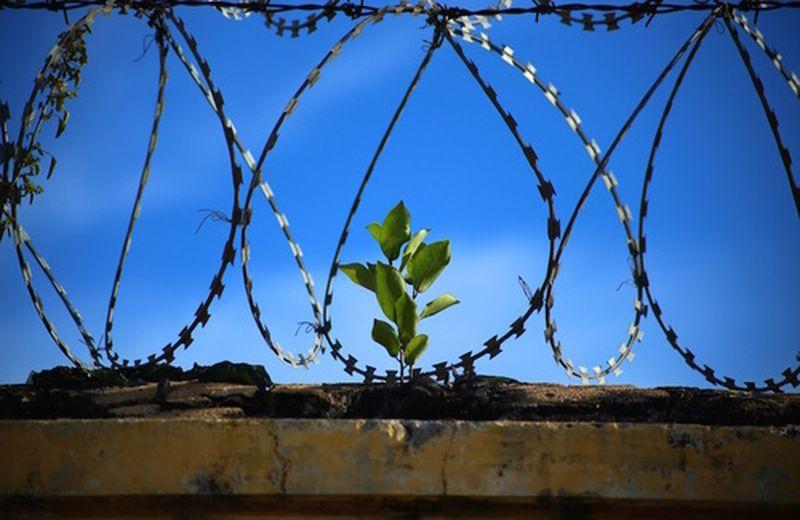 Fundación Parinaama: lo yoga in carcere