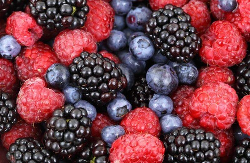 Frutti di bosco, proprietà e ricette