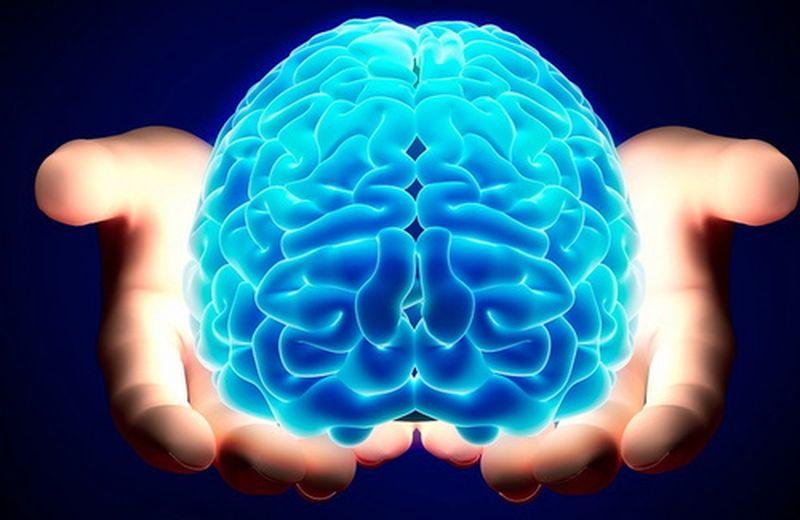 Non mangiamoci il cervello!