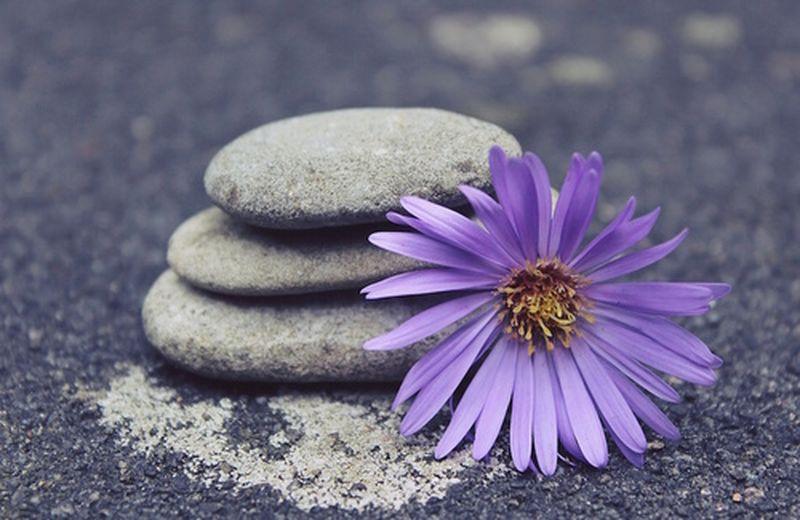 Il significato dei fiori nello yoga integrale