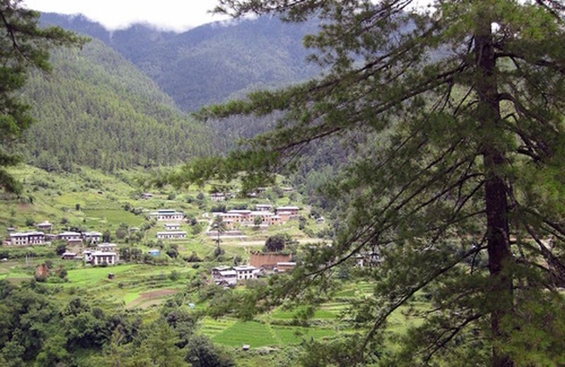 Bhutan, primo paese biologico