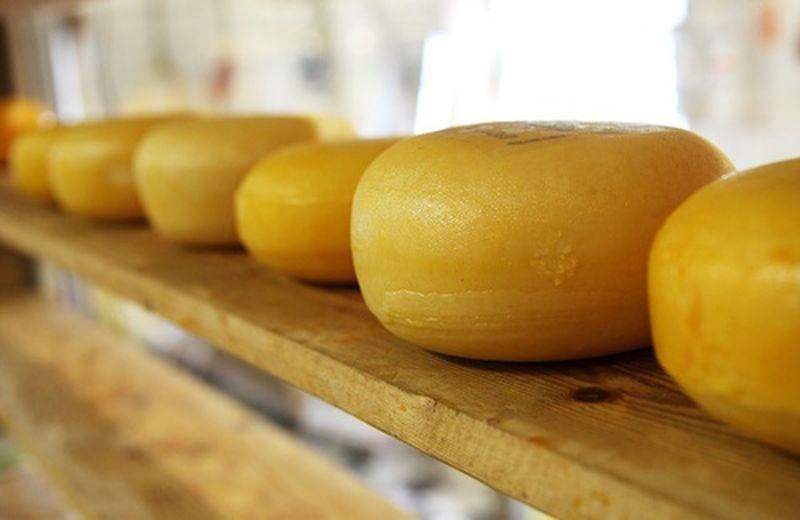 I formaggi light