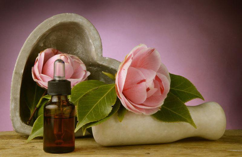 L'olio di semi di camelia, benefici e uso