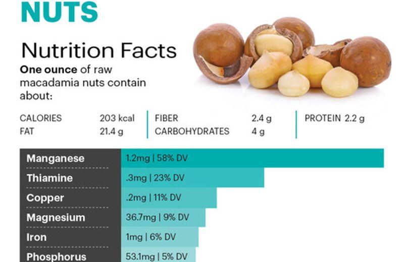 Noci Macadamia: il cibo ricco di manganese che supporta la salute delle ossa
