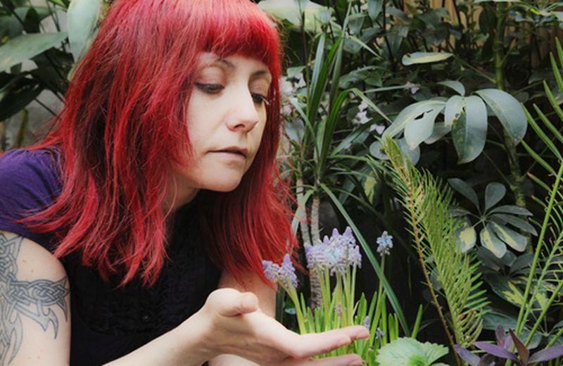 L'erborista e il potere curativo delle piante