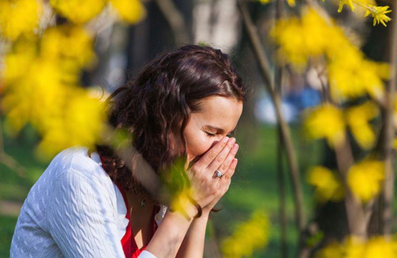 Le allergie respiratorie: quali sono e come si manifestano