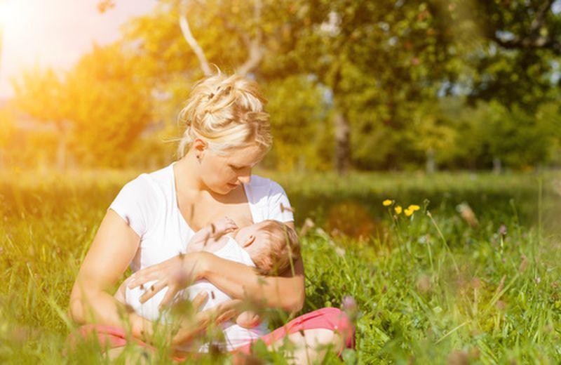 Moringa oleifera e allattamento al seno